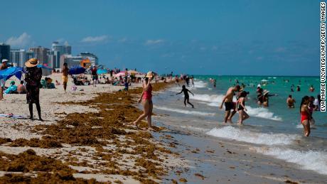 A medida que Florida sale del cierre, aumenta el número de casos de Covid-19